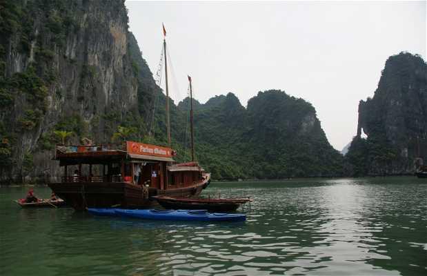 Kayaks dans la baie d'Ha Long