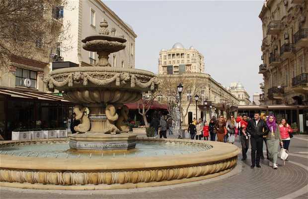 Avenida Nizami