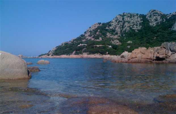 Capo Ceraso