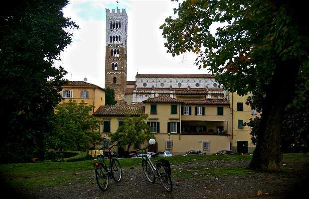 Ruta en bicicleta: Muralla de Lucca