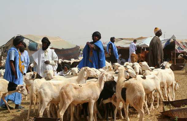 Le grand marché de Nouakchott