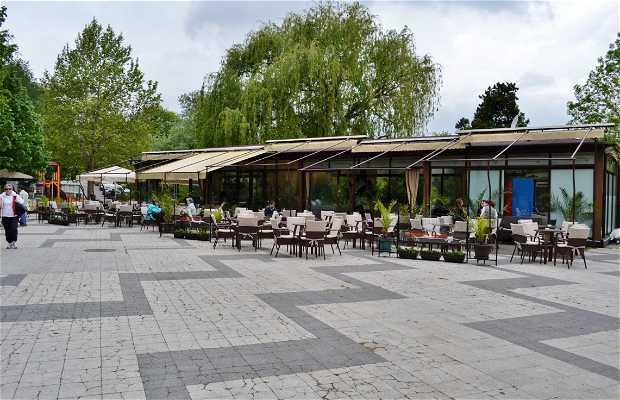 Parco Borisova Gradina