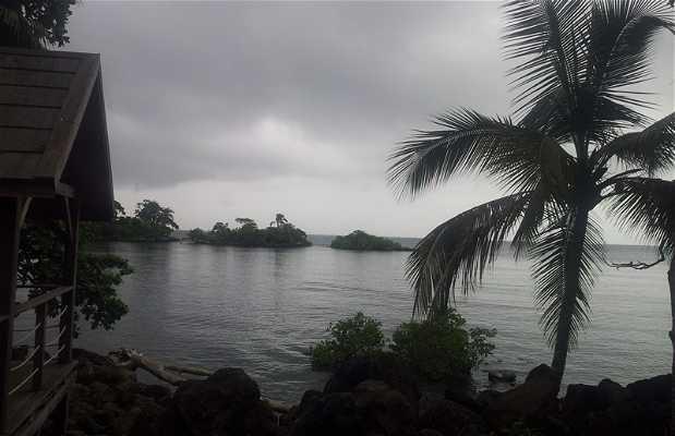 Isla Horacio