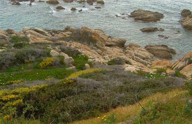 Miradores del golfo de Ajaccio