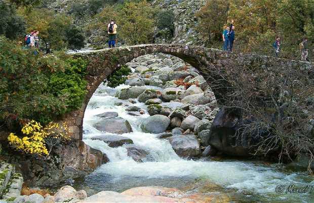 Puente Nuevo o de Carlos V