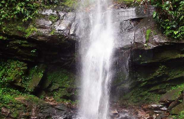 Cataratas Auashiyacu