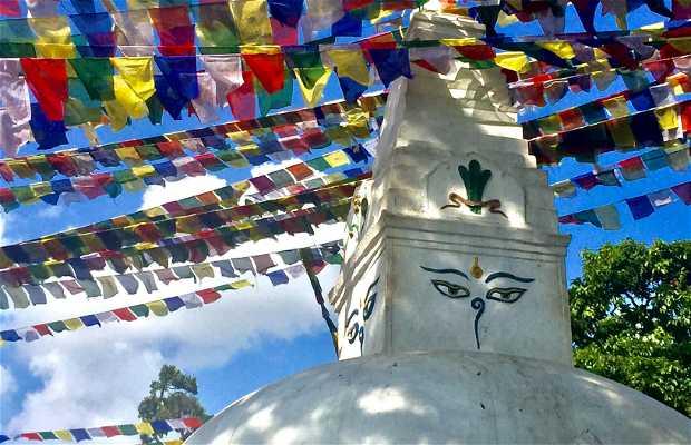 Swayambhunat Stupa