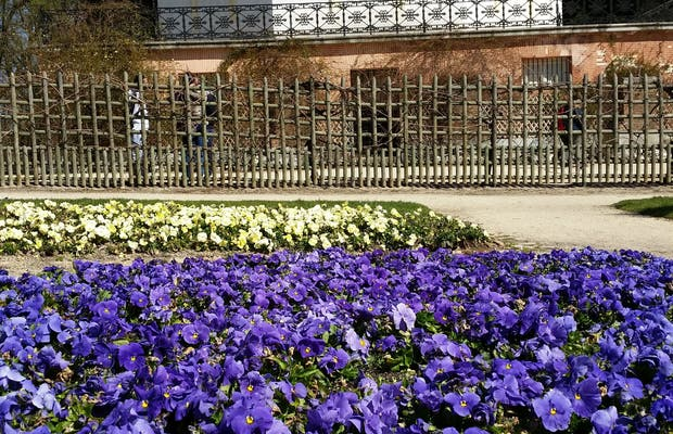 Jardín de flores en Madrid: 1 opiniones y 3 fotos