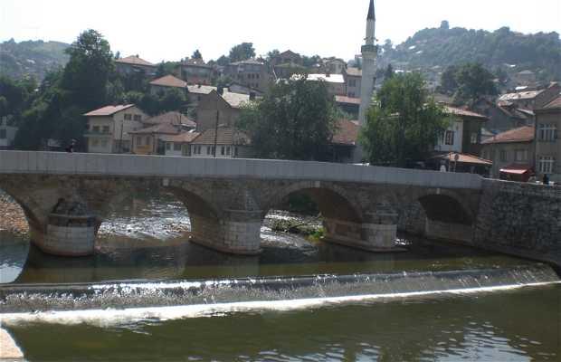 Ponte Seher Cehaja