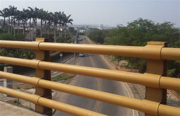Puente Enrique Cuadros Corredor