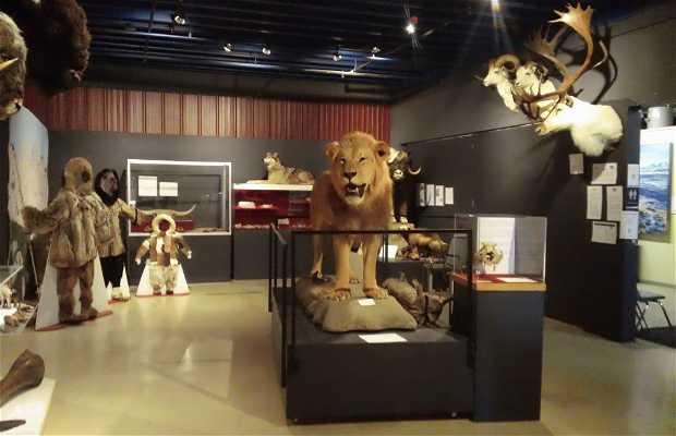 Alaska Museum of Natural History