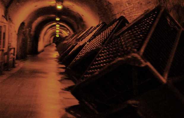 Cellar of Champgane