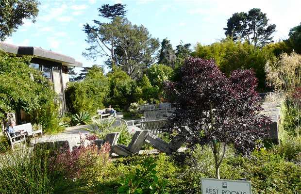 Jardín Botánico de San Francisco