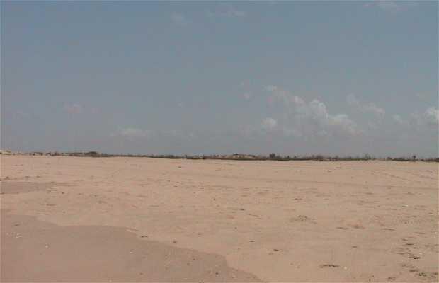 Parque Nacional de Langue de Barbarie