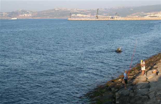 Pesca de altura en Tánger