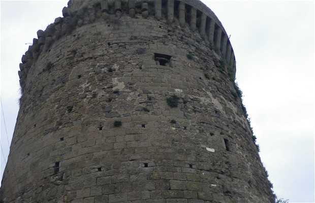 Torre Maschia