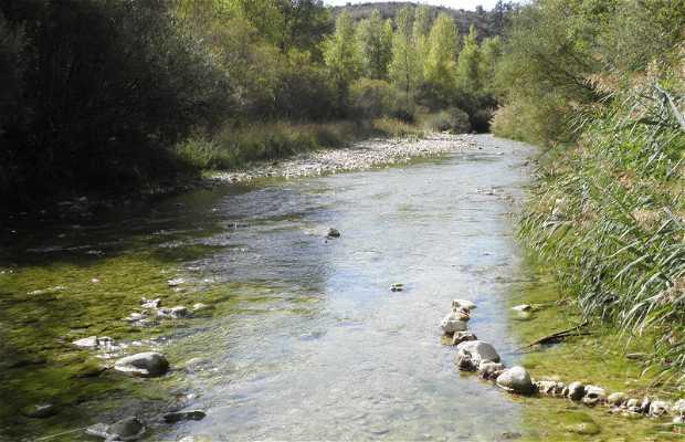 Rivière Vero