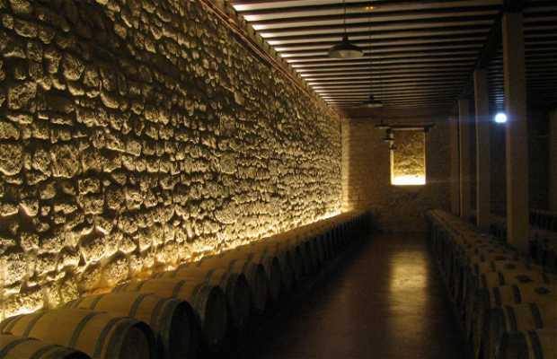 La Rioja Alta wine cellar