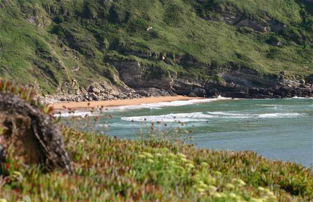 Cliffs of Suances