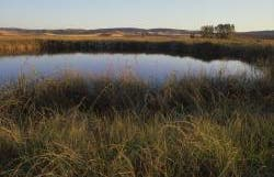 Reserva Natural Complejo Lagunar De Arcas