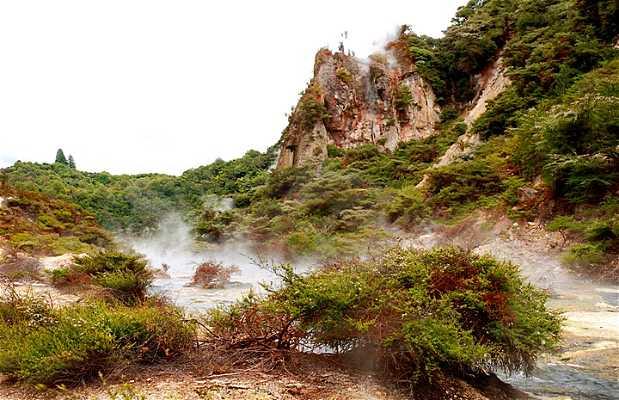 Vallée volcanique de Waimangu