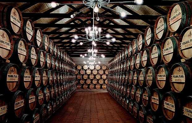 Miguel Calatayud wineries
