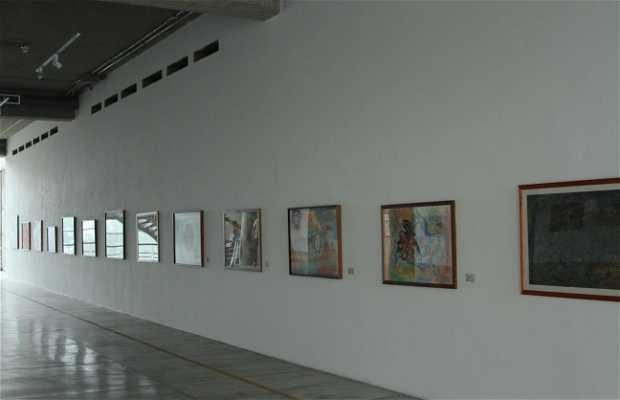 Museo Mateo Manaure