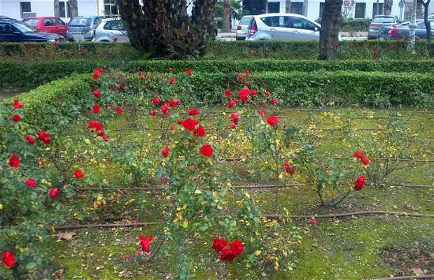 Jardines del Rocio