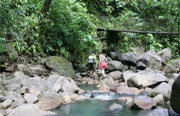 Carbet Falls (Chutes de Carbet)