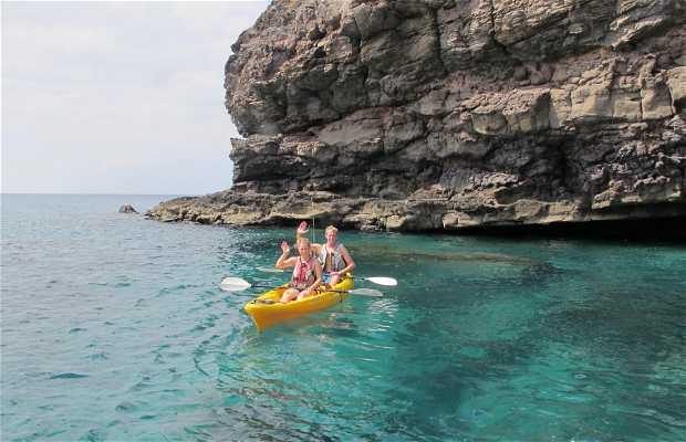 Kayak Safaris