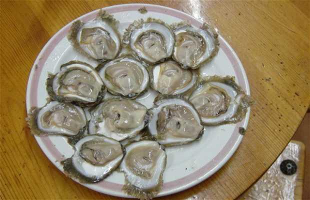 Huîtres à Pedra