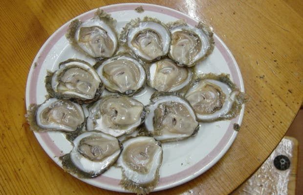 Oysters in A Pedra