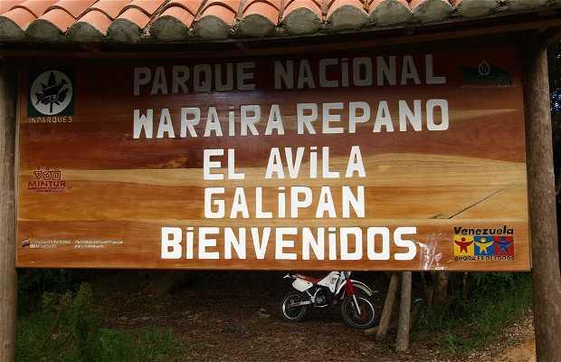 Trilha Picacho el Ávila