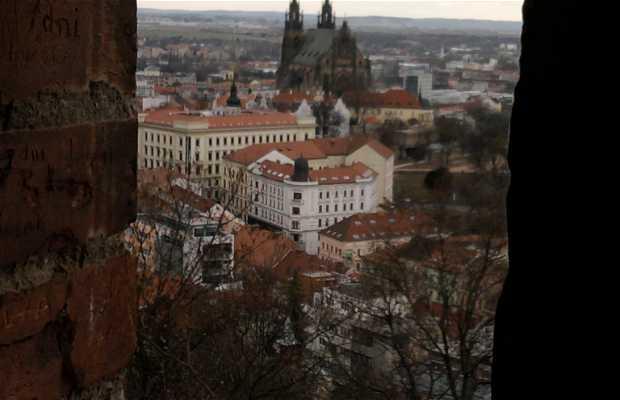 Città di Brno