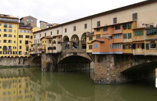 Puentes sobre el Arno