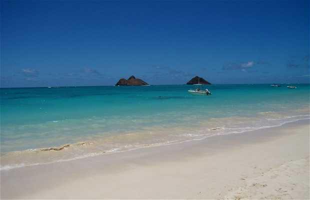 Playa de Lanikai